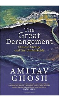 The Great Derangement: Climate Change and the Unthinkable Hardcover– 12 Jul 2016