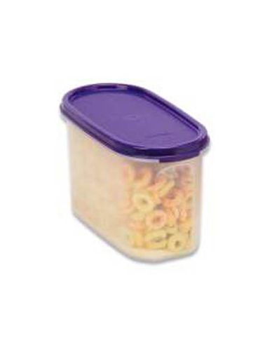 Tupperware Oval Container
