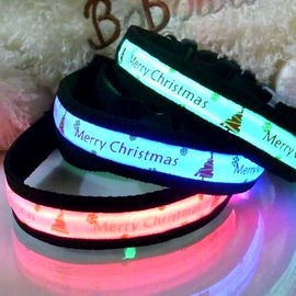 Puppy Love LED Collars for Medium Dogs, red, medium