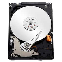 Western Digital Laptop Internal Hard Disk, 1tb