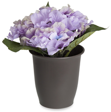 Forest Hydrangea Plant Pot - @home By Nilkamal, Lavender