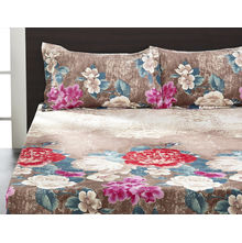 Seasons Floral Double Bed Sheet - @home By Nilkamal, Brown
