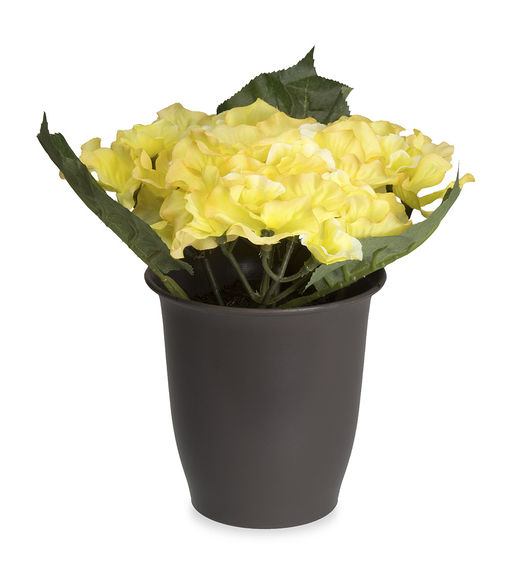Forest Hydrangea Plant Pot - @home By Nilkamal, Yellow